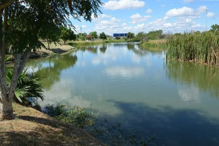 Semmam vai comemorar o Dia da Água com oficinas e exposição temática